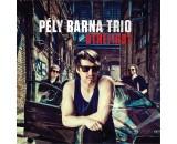 PÉLY BARNA  TRIO - Bthefirst